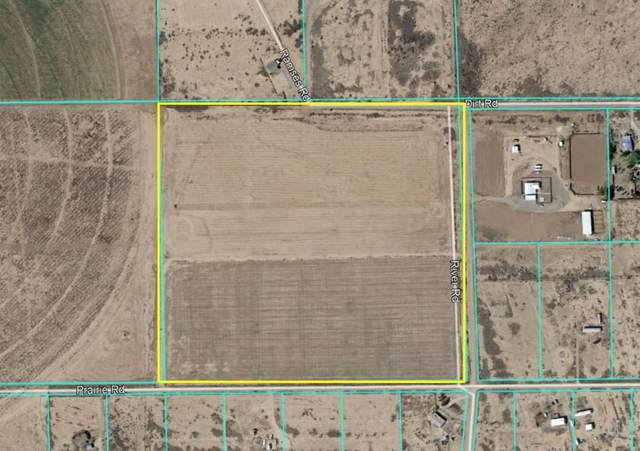 44 River Road, Unincorporated, NM 99999 (MLS #827049) :: Preferred Closing Specialists