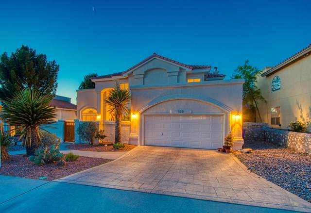 529 Moondale Drive, El Paso, TX 79912 (MLS #827263) :: Preferred Closing Specialists