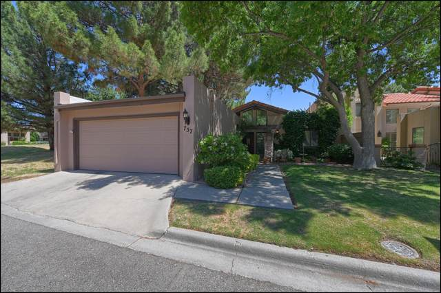 737 Lakeshore Drive, El Paso, TX 79932 (MLS #827710) :: Preferred Closing Specialists