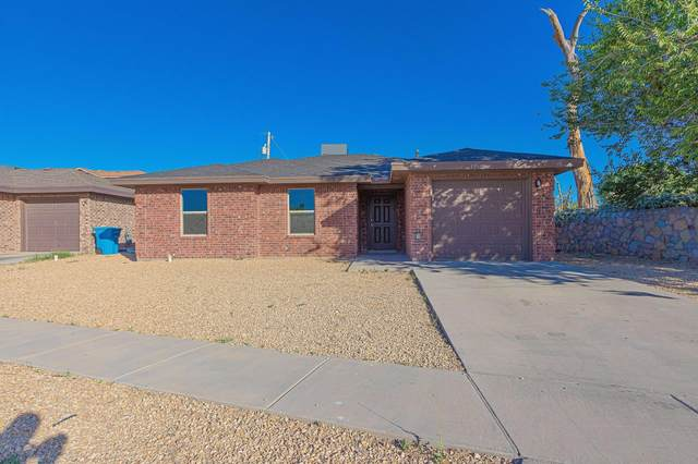 1036 Oscar Chacon, San Elizario, TX 79849 (MLS #827809) :: The Matt Rice Group