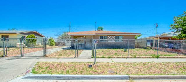 10344 Hollyhock Drive, El Paso, TX 79924 (MLS #827976) :: Preferred Closing Specialists