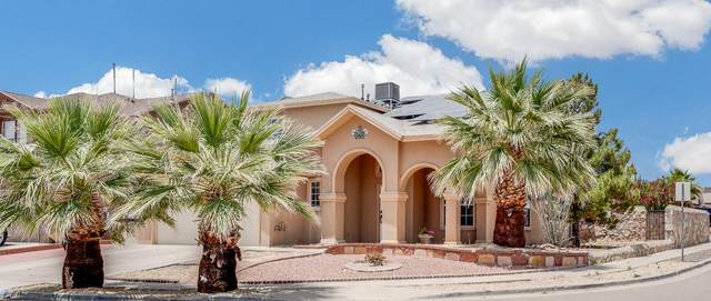 1317 Vikki Carr Lane, El Paso, TX 79936 (MLS #828296) :: The Purple House Real Estate Group