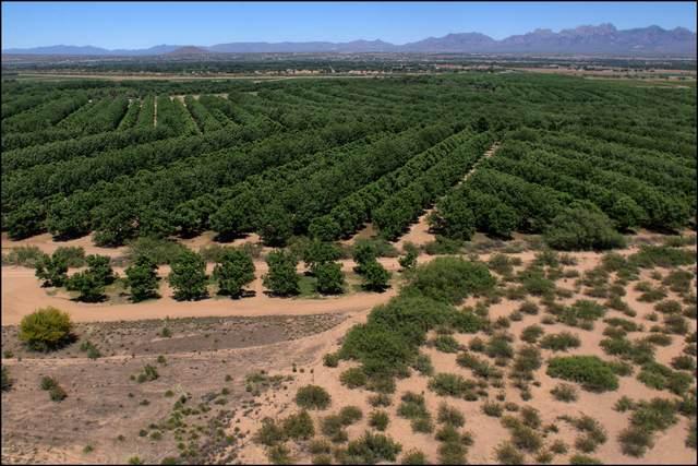 3903 Pantera Circle, Las Cruces, NM 88007 (MLS #828379) :: Jackie Stevens Real Estate Group brokered by eXp Realty
