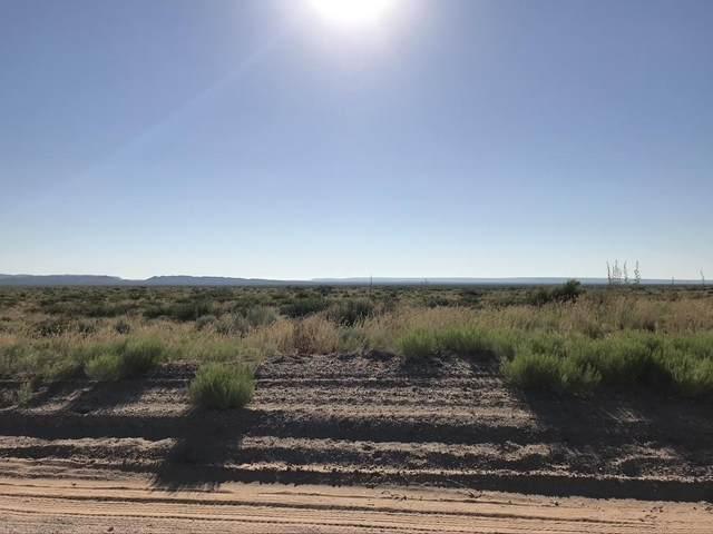 TBD Indian Trail, Clint, TX 79836 (MLS #828476) :: Mario Ayala Real Estate Group