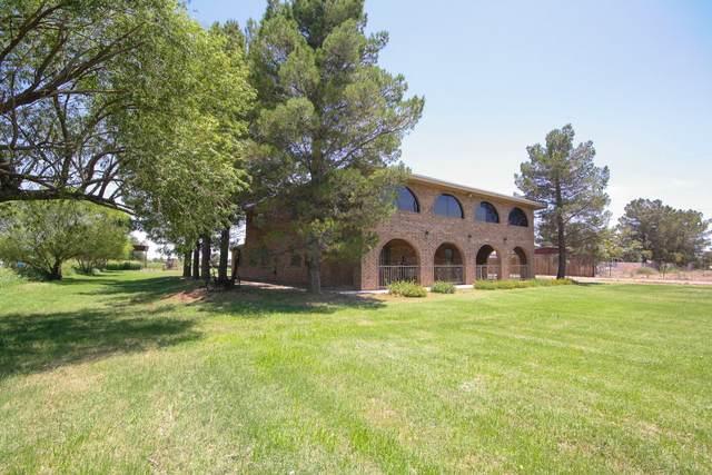 11731 Socorro Road, El Paso, TX 79927 (MLS #829171) :: The Purple House Real Estate Group