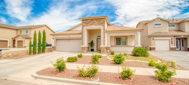 14717 Hunters Grove Avenue, El Paso, TX 79938 (MLS #829205) :: The Purple House Real Estate Group