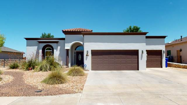 4693 Mesa Rico Drive, Las Cruces, NM 88011 (MLS #829250) :: The Purple House Real Estate Group