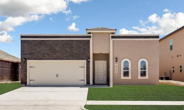 15101 Imagine, El Paso, TX 79938 (MLS #829696) :: Jackie Stevens Real Estate Group brokered by eXp Realty