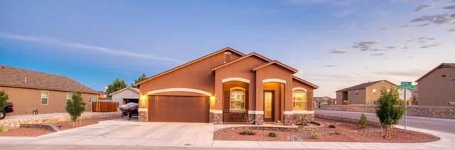 978 Grandevole Drive, El Paso, TX 79932 (MLS #829724) :: Jackie Stevens Real Estate Group brokered by eXp Realty