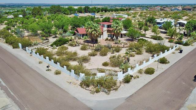 831 Anthony Avenue, Canutillo, TX 79835 (MLS #829784) :: Mario Ayala Real Estate Group