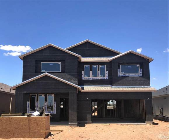 5949 Hidden Acres Drive, El Paso, TX 79924 (MLS #829813) :: The Matt Rice Group