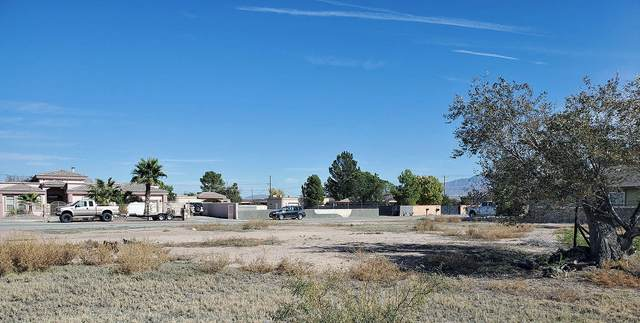 1008 Kimberley Street, El Paso, TX 79932 (MLS #830041) :: Preferred Closing Specialists