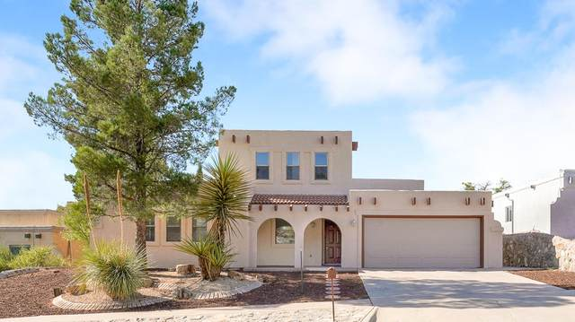 221 Gus Rallis Drive, El Paso, TX 79932 (MLS #830122) :: Preferred Closing Specialists