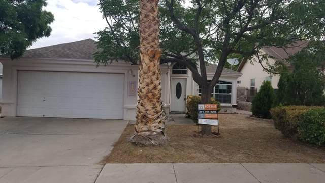 7967 Morning Dawn Avenue, El Paso, TX 79932 (MLS #830168) :: Preferred Closing Specialists