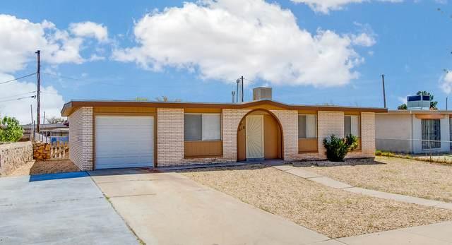 8610 Amigo Drive, El Paso, TX 79907 (MLS #830214) :: The Purple House Real Estate Group