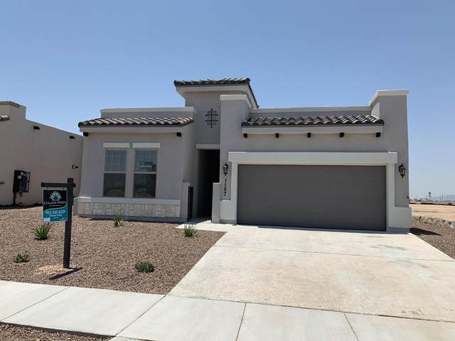 913 Witton Place, El Paso, TX 79928 (MLS #830225) :: Mario Ayala Real Estate Group