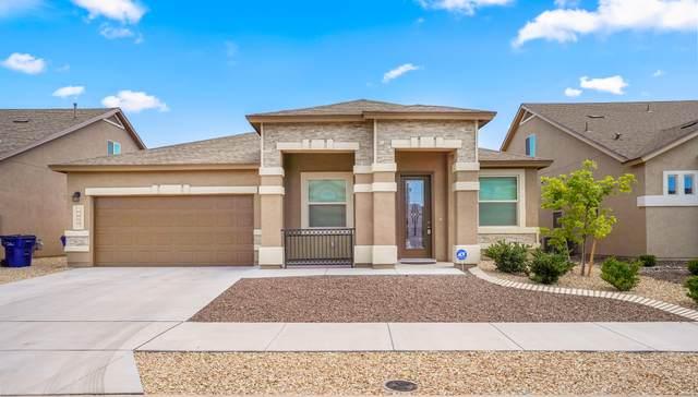 14933 Sunny Land Avenue, El Paso, TX 79938 (MLS #830306) :: Mario Ayala Real Estate Group