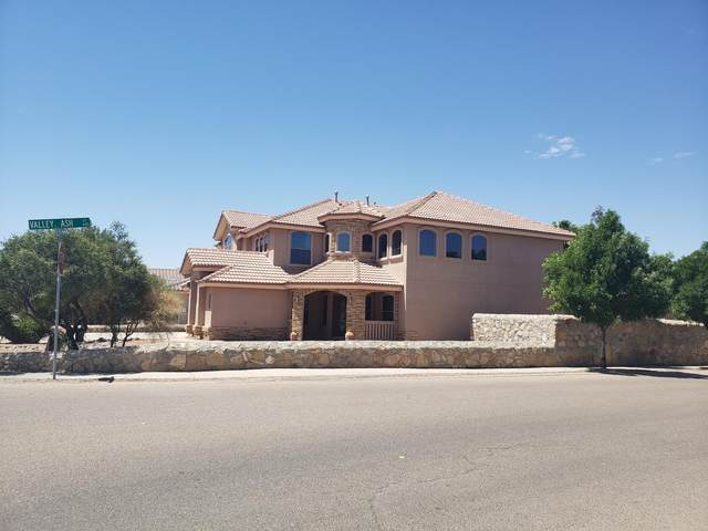 5645 Valley Oak Drive, El Paso, TX 79932 (MLS #830313) :: Mario Ayala Real Estate Group