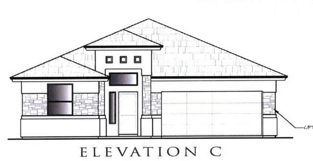 14505 Onnie Kirk Avenue, El Paso, TX 79938 (MLS #830314) :: Jackie Stevens Real Estate Group brokered by eXp Realty