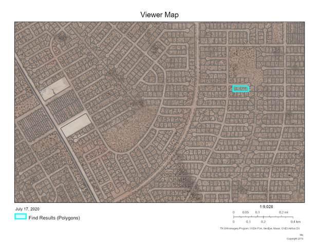 0 Frian, Horizon City, TX 79928 (MLS #830582) :: Mario Ayala Real Estate Group