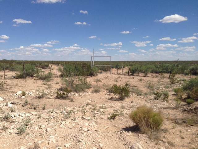 26 Sec 22 Sunset Ranches #641, Sierra Blanca, TX 79851 (MLS #830594) :: The Matt Rice Group