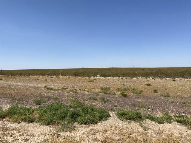 TBD Tbd, Sierra Blanca, TX 79851 (MLS #830736) :: The Purple House Real Estate Group