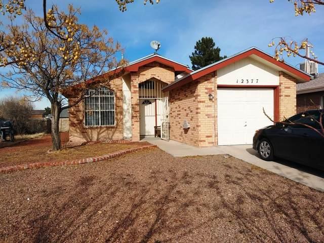 12377 Bill Mitchell Drive, El Paso, TX 79938 (MLS #830973) :: The Matt Rice Group
