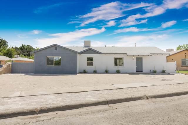 225 Longhorn Drive, El Paso, TX 79907 (MLS #831278) :: Mario Ayala Real Estate Group