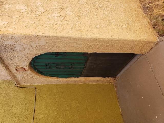 10632 Cuatro Vistas Drive D, El Paso, TX 79935 (MLS #831345) :: The Matt Rice Group