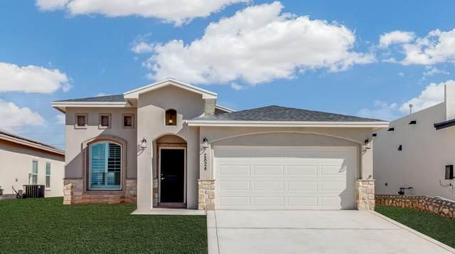201 Flor Papagayo Way, El Paso, TX 79927 (MLS #831616) :: Mario Ayala Real Estate Group
