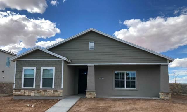 14744 Tierra Harbor Avenue, El Paso, TX 79938 (MLS #831620) :: The Purple House Real Estate Group