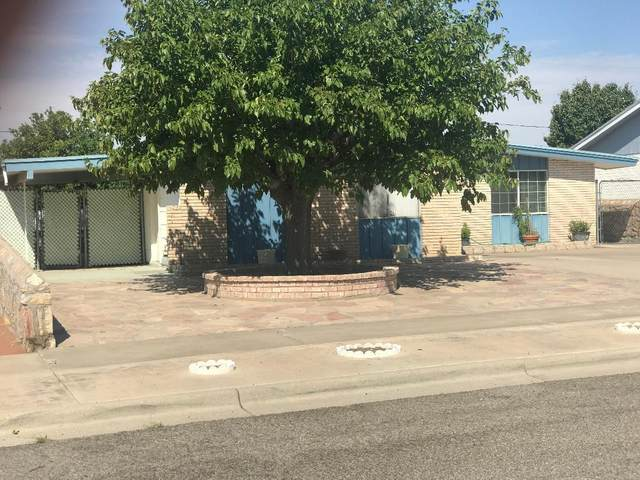 5225 Marietta Street, El Paso, TX 79932 (MLS #831835) :: Jackie Stevens Real Estate Group brokered by eXp Realty