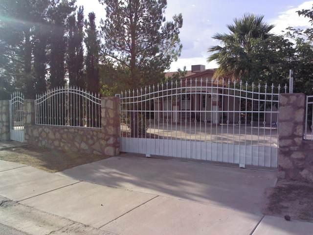 481 Uxmal Avenue, San Elizario, TX 79849 (MLS #831946) :: Jackie Stevens Real Estate Group brokered by eXp Realty