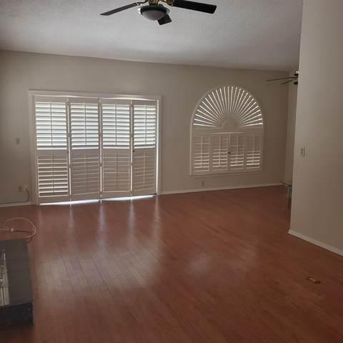 4618 N Stanton F41, El Paso, TX 79902 (MLS #832013) :: Mario Ayala Real Estate Group