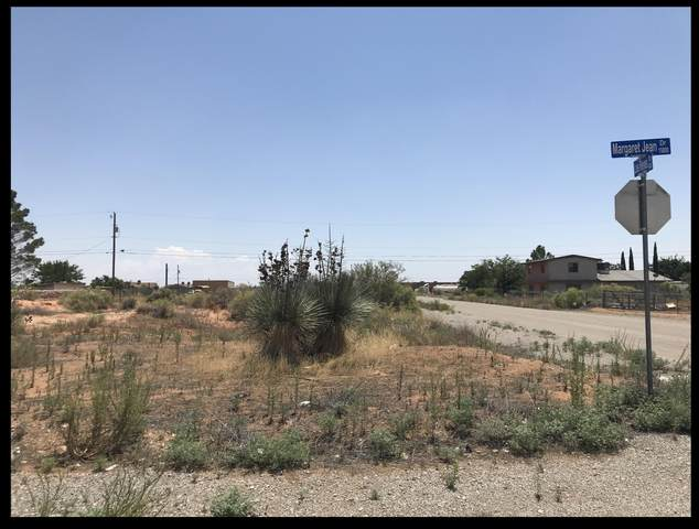 15000 Margaret Jean Drive, Clint, TX 79938 (MLS #832017) :: The Purple House Real Estate Group