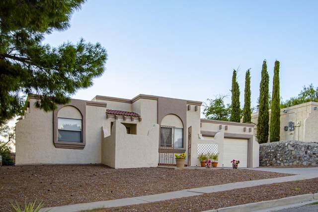 213 Alvarez Drive, El Paso, TX 79932 (MLS #832024) :: The Matt Rice Group