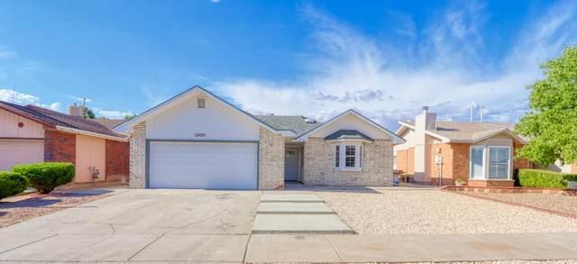 12425 Carlos Bombach Avenue, El Paso, TX 79928 (MLS #832336) :: Preferred Closing Specialists