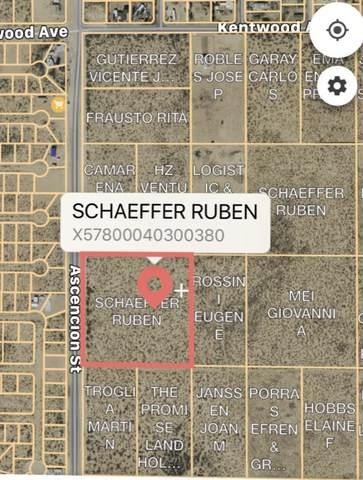 TBD Ascencion Street, Horizon City, TX 79928 (MLS #832378) :: Mario Ayala Real Estate Group