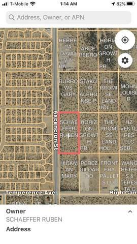 TBD-3 Ascencion Street, Horizon City, TX 79928 (MLS #832398) :: Mario Ayala Real Estate Group