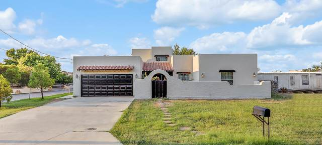 1019 Gomez Road, El Paso, TX 79932 (MLS #832479) :: Mario Ayala Real Estate Group