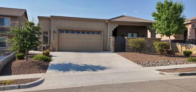 7243 Longspur, El Paso, TX 79911 (MLS #832738) :: Mario Ayala Real Estate Group