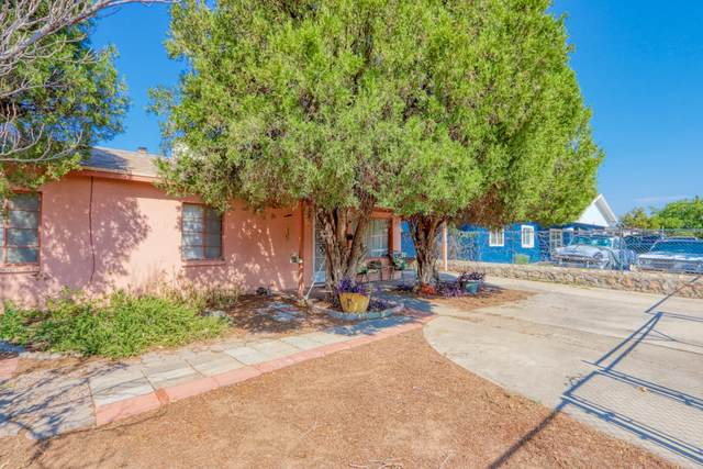 8319 Mount Everest Drive, El Paso, TX 79904 (MLS #832810) :: Jackie Stevens Real Estate Group brokered by eXp Realty