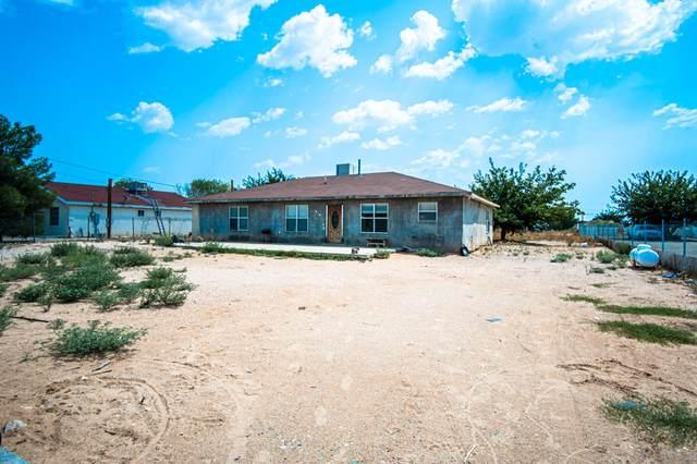 14608 Desert Blossom Drive, Clint, TX 79836 (MLS #832832) :: The Matt Rice Group
