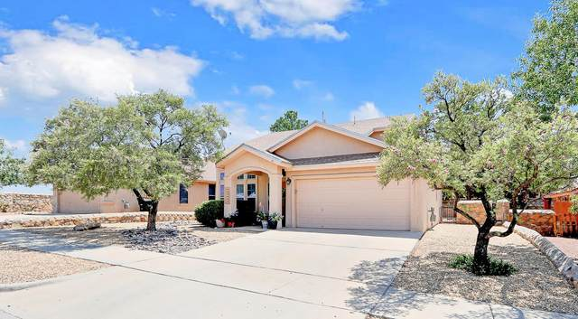 14144 Highweed Drive, Horizon City, TX 79928 (MLS #832877) :: The Matt Rice Group