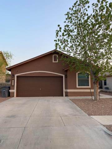 14462 Onnie Kirk Avenue, El Paso, TX 79938 (MLS #832885) :: The Matt Rice Group