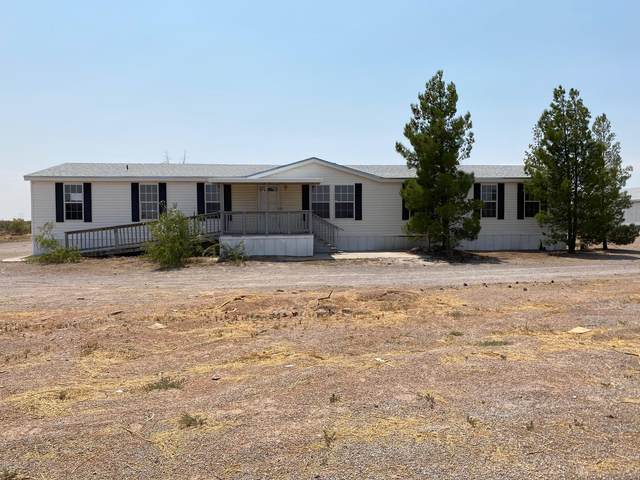 1167 Riley Way, Chaparral, NM 88081 (MLS #832906) :: Preferred Closing Specialists
