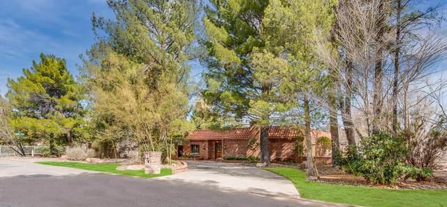 4848 Olmos Drive, El Paso, TX 79922 (MLS #832967) :: Mario Ayala Real Estate Group