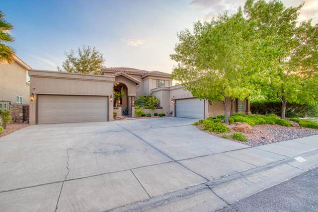 6484 Calle Placido Drive, El Paso, TX 79912 (MLS #833028) :: Jackie Stevens Real Estate Group brokered by eXp Realty