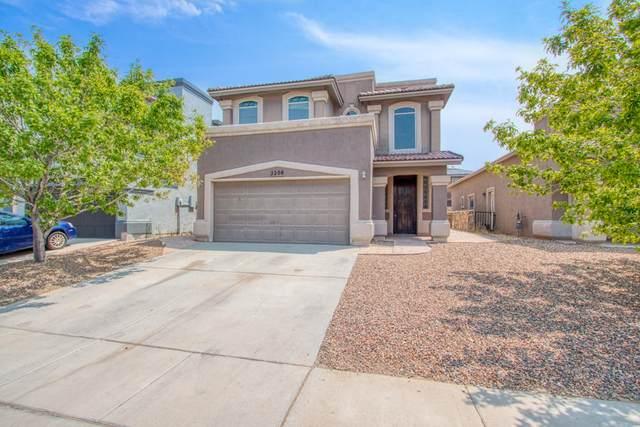 2208 Hannah Leigh Street, El Paso, TX 79938 (MLS #833193) :: The Matt Rice Group