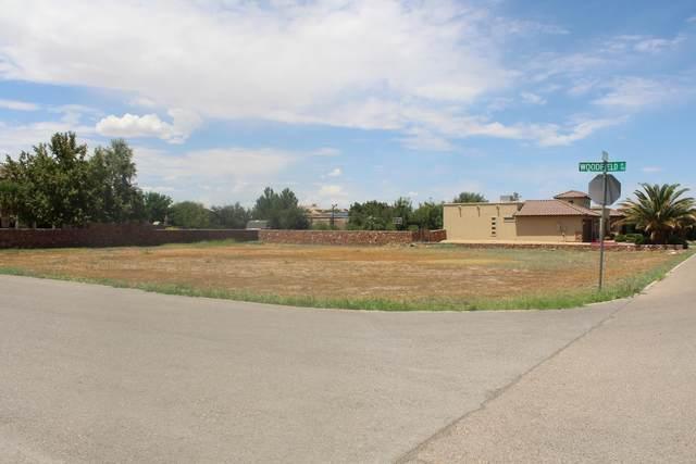 5505 Milray Drive, El Paso, TX 79932 (MLS #833296) :: Mario Ayala Real Estate Group